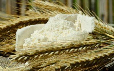 Come conservare la farina nei mesi estivi